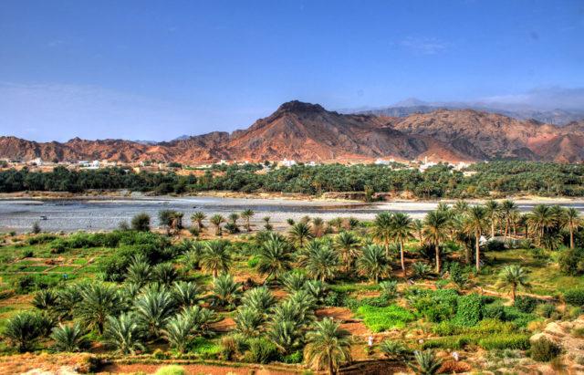 Destination-insolite-Oman