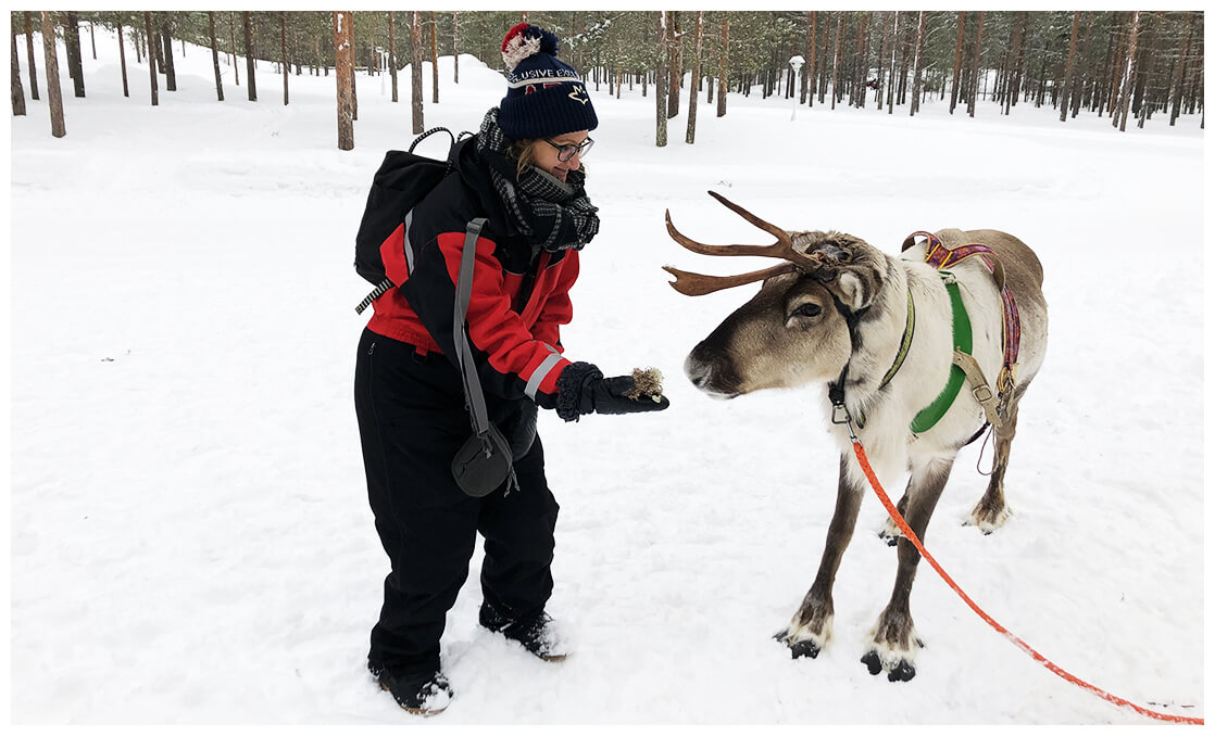 Wagram & Vous en Laponie