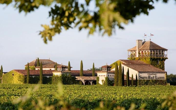 Les vignes du Chateau Smith Haut Lafitte